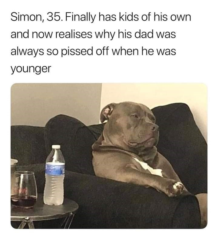 Text - Simon, 35. Finally has kids of his own and now realises why his dad was always so pissed off when he was younger