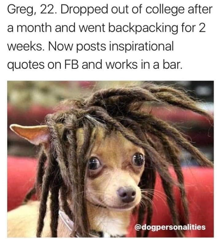 Hair - Greg, 22. Dropped out of college after a month and went backpacking for 2 weeks. Now posts inspirational quotes on FB and works in a bar. @dogpersonalities