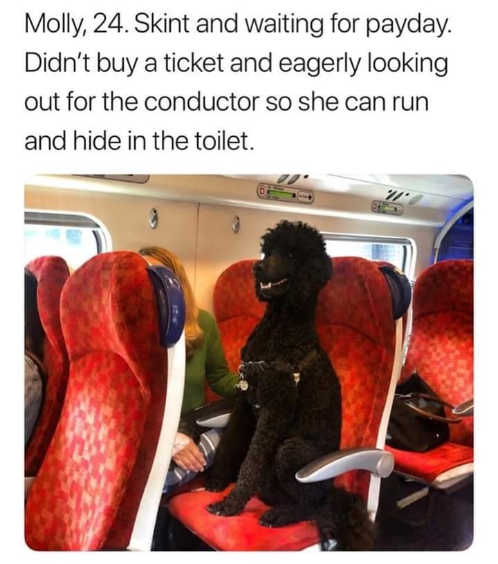 Car seat - Molly, 24. Skint and waiting for payday. Didn't buy a ticket and eagerly looking out for the conductor so she can run and hide in the toilet.