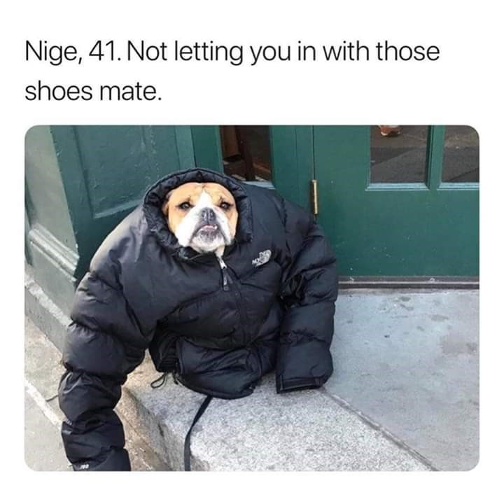 Human - Nige, 41. Not letting you in with those shoes mate.
