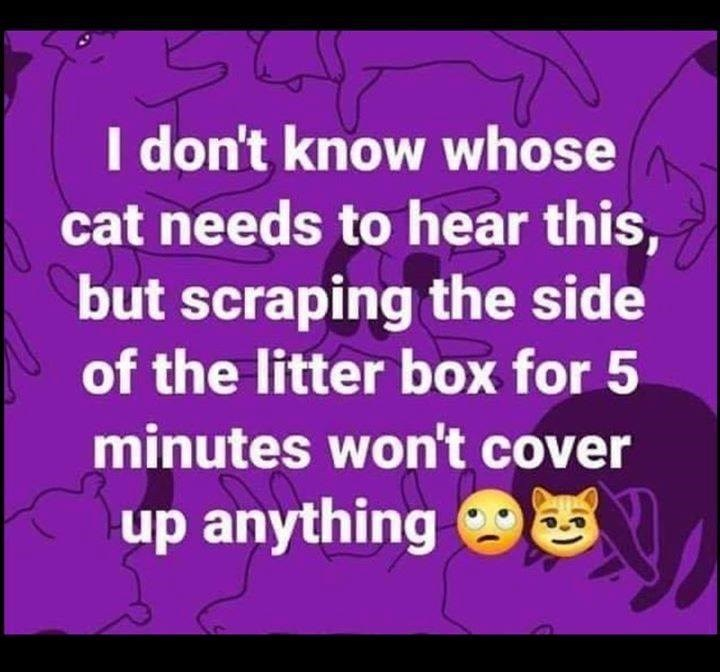 I don't know whose cat needs to hear this, but scraping the side of the litter box for 5 minutes won't cover up anything