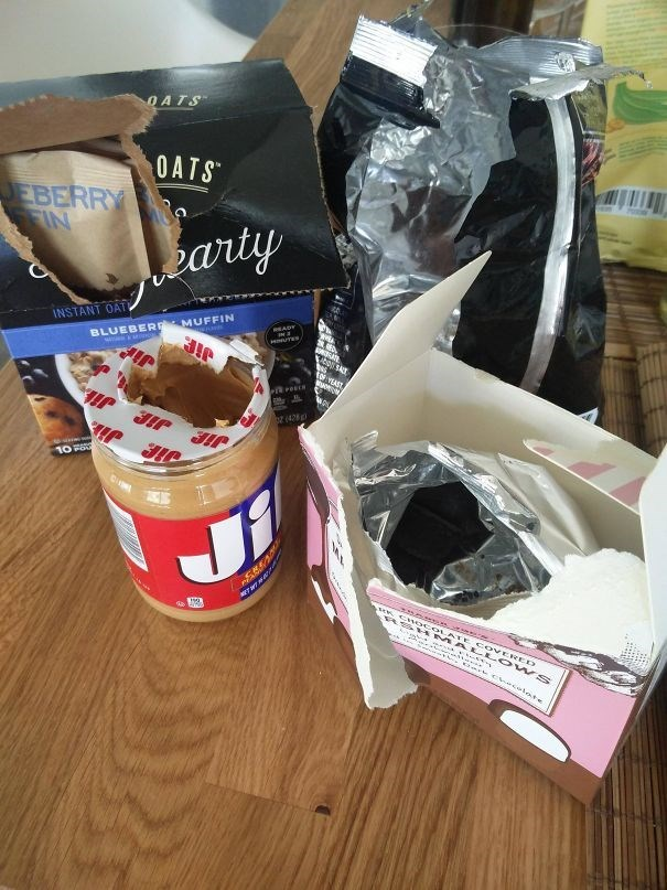 Present - OATS OATS EBERRY IN earty BLUEBER MUFFIN JIP INSTANT OAT వ S tor: MA 12ark hecal ate