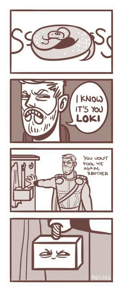 Cartoon -   KNOW IT'S YOU LOKI You WONIT FOOL ME AGA IN, BROTHER AGISSEU