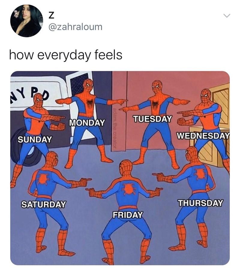 Product - @zahraloum how everyday feels AYPO TUESDAY MONDAY WEDNESDAY SUNDAY SATURDAY THURSDAY FRIDAY adam.the.crea