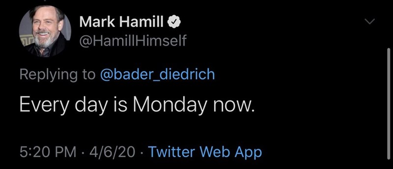 Text - Mark Hamill @HamillHimself Replying to @bader_diedrich Every day is Monday now. 5:20 PM · 4/6/20 · Twitter Web App