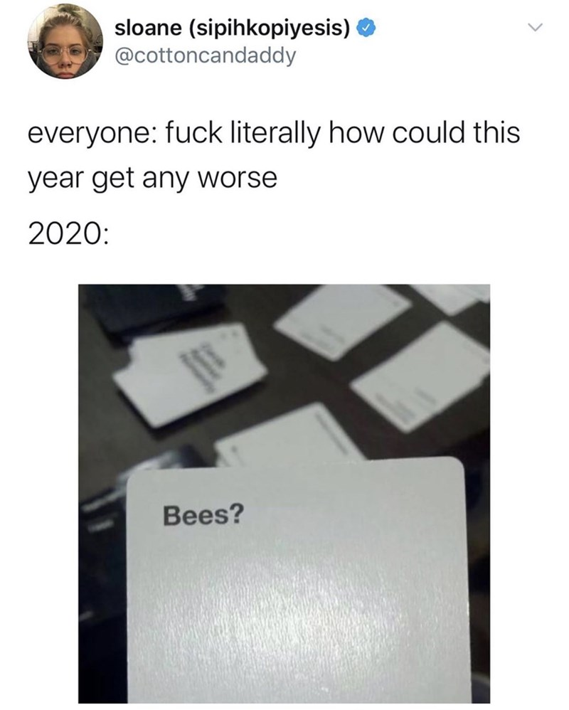 Text - sloane (sipihkopiyesis) @cottoncandaddy everyone: fuck literally how could this year get any worse 2020: Bees?