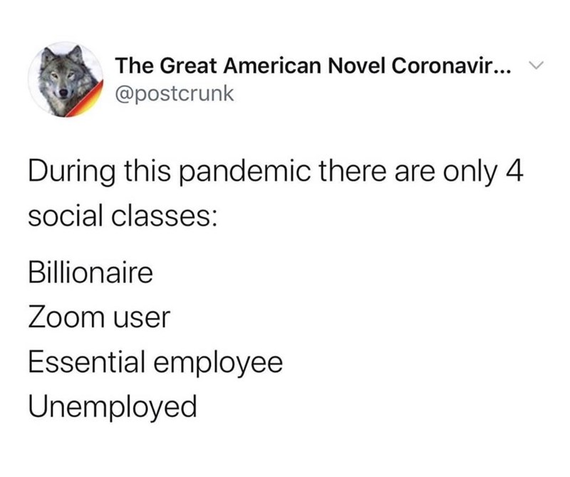 Text - The Great American Novel Coronavir... v @postcrunk During this pandemic there are only 4 social classes: Billionaire Zoom user Essential employee Unemployed