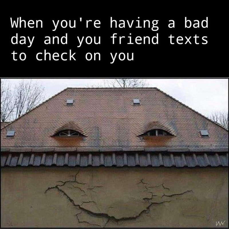 Roof - When you're having day and you friend texts to check on you a bad