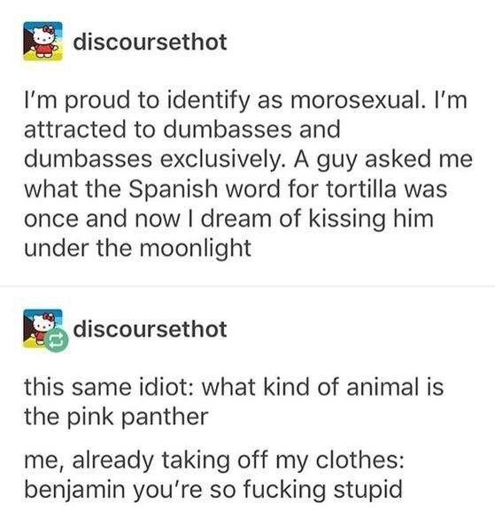 Text - discoursethot I'm proud to identify as morosexual. I'm attracted to dumbasses and dumbasses exclusively. A guy asked me what the Spanish word for tortilla was once and now I dream of kissing him under the moonlight discoursethot this same idiot: what kind of animal is the pink panther me, already taking off my clothes: benjamin you're so fucking stupid