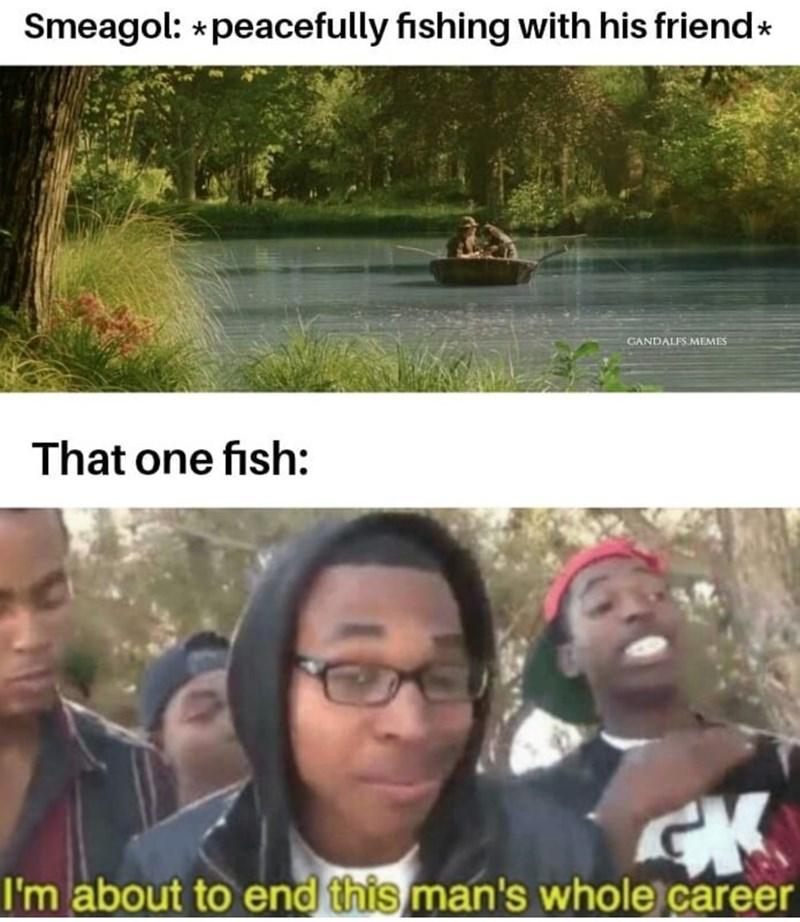 Adaptation - Smeagol: *peacefully fishing with his friend* GANDALFS.MEMES That one fish: I'm about to end this man's whole career
