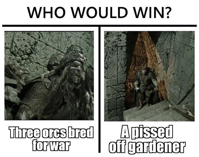 Text - WHO WOULD WIN? Three orcs bred for war Apissed off gardener