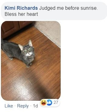 Cat - Kimi Richards Judged me before sunrise. Bless her heart 27 Like Reply 1d