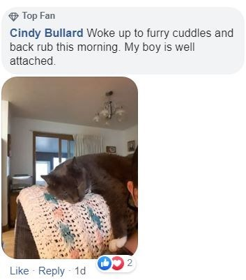 Product - Top Fan Cindy Bullard Woke up to furry cuddles and back rub this morning. My boy is well attached. Like - Reply 1d CO.