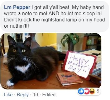 Cat - Lm Pepper I got all y'all beat. My baby hand wrote a note to mel AND he let me sleep in! Didn't knock the nightstand lamp on my head or nuthin'lI! Happy. Mothers DAY! Like Reply - 1d Edited