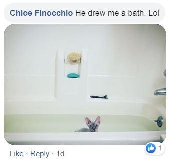 Product - Chloe Finocchio He drew me a bath. Lol Like Reply 1d
