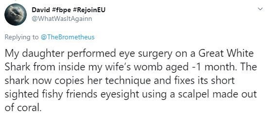 Text - David #fbpe #RejoinEU @WhatWasltAgainn Replying to @TheBrometheus My daughter performed eye surgery on a Great White Shark from inside my wife's womb aged -1 month. The shark now copies her technique and fixes its short sighted fishy friends eyesight using a scalpel made out of coral.