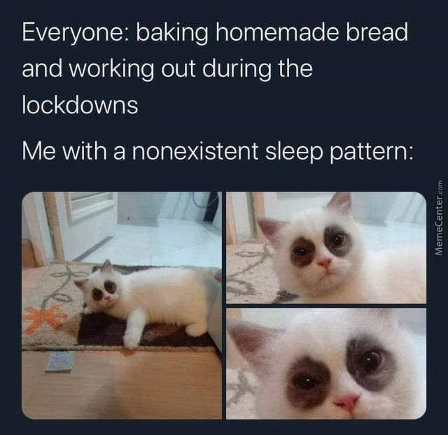 Everyone: baking homemade bread and working out during the lockdowns Me with a nonexistent sleep pattern: funny white cat with black spots on its eyes that look like dark circles