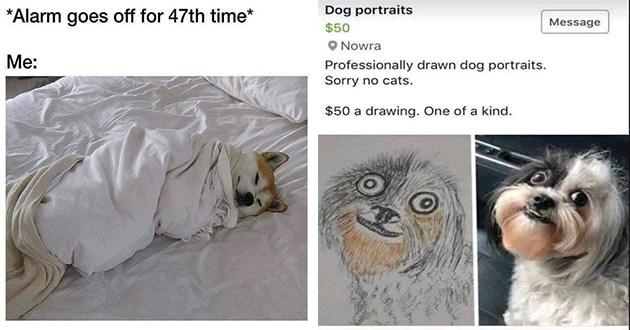 funny doggo dog memes