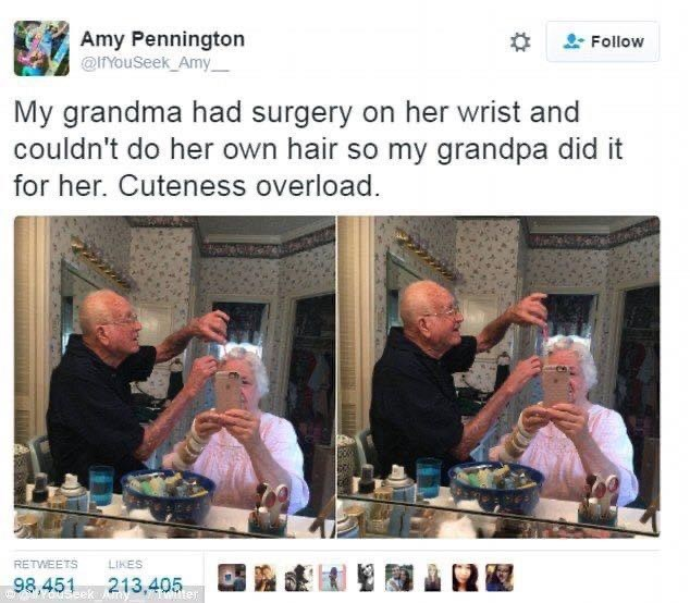 Community - Amy Pennington @IYouSeek Amy %23 Follow My grandma had surgery on her wrist and couldn't do her own hair so my grandpa did it for her. Cuteness overload. RETWEETS LIKES 98,451 213,405 E Youseek Am