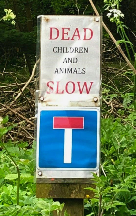Sign - DEAD CHILDREN AND ANIMALS SLOW