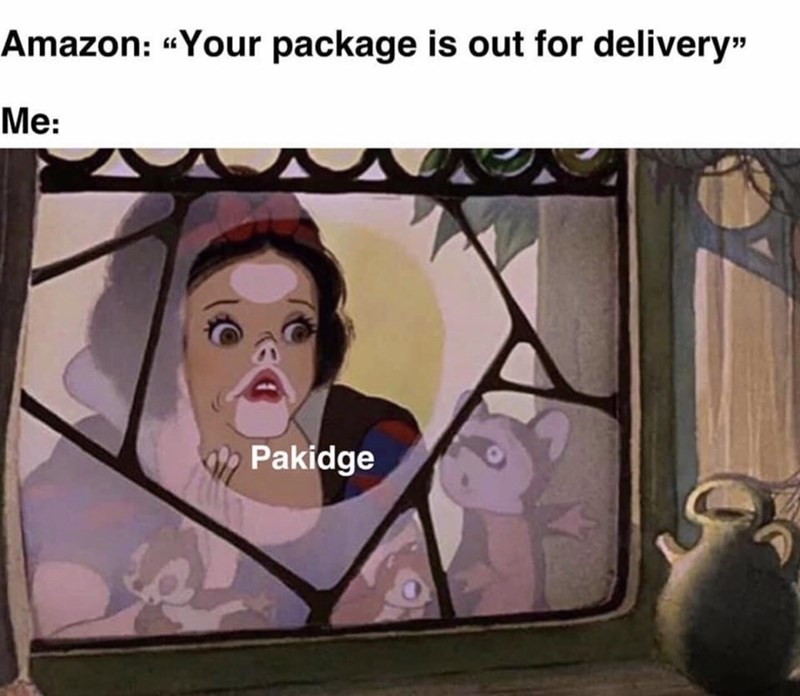 """Facial expression - Amazon: """"Your package is out for delivery"""" Me: Pakidge"""