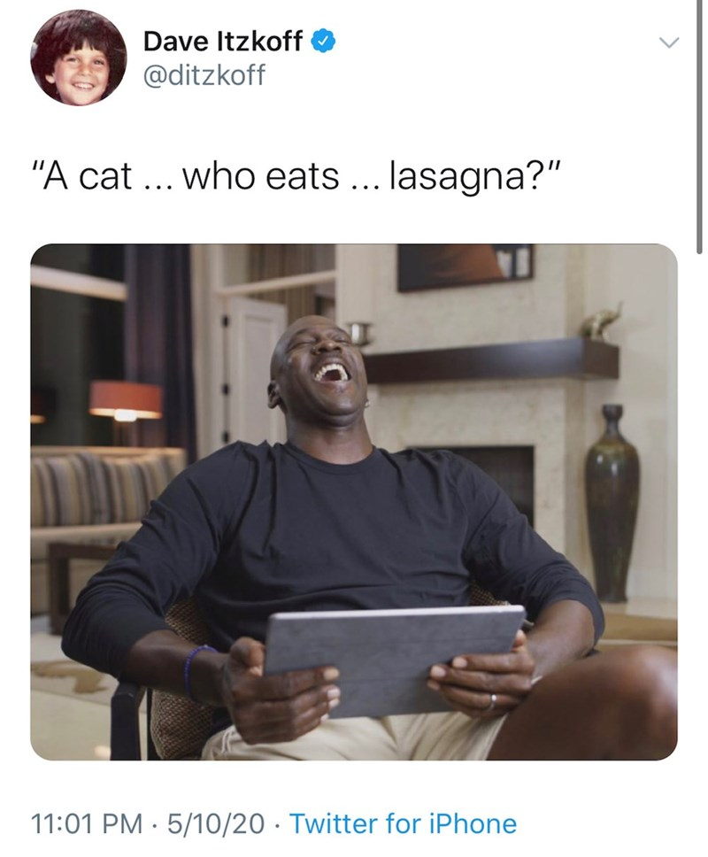 """Text - Dave Itzkoff @ditzkoff """"A cat ... who eats .. lasagna?"""" 11:01 PM · 5/10/20 · Twitter for iPhone"""
