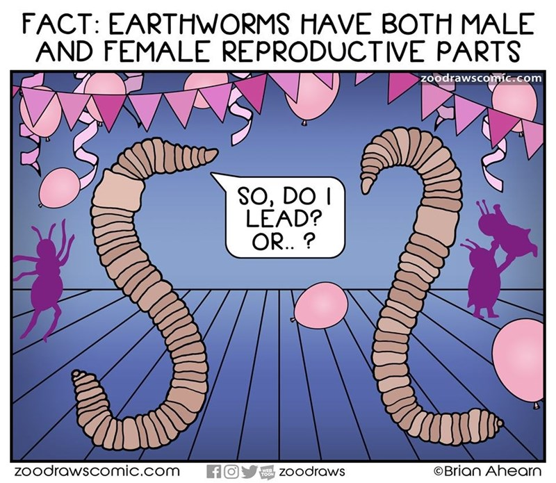 Organism - FACT: EARTHWORMS HAVE BOTH MALE AND FEMALE REPRODUCTIVE PARTS zoodrawscomíc.com SO, DO I LEAD? OR. ? zoodrawscomic.com WEB TOON zoodraws ©Brian Ahearn