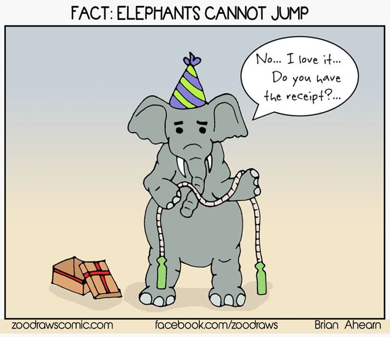 Cartoon - FACT: ELEPHANTS CANNOT JUMP No... I love it... Do you have the receipt?. Zoodrawscomic.com facebook.com/zoodraws Brian Ahearn