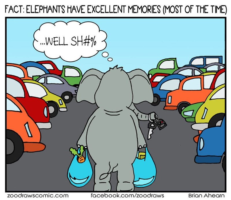 Cartoon - FACT: ELEPHANTS HAVE EXCELLENT MEMORIES (MOST OF THE TIME) .WELL SH#% Zoodrawscomic.com facebook.com/zoodraws Brian Ahearn