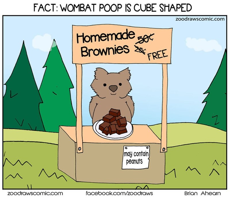 Cartoon - FACT: WOMBAT POOP IS CUBE SHAPED zoodrawscomic.com Homemade see Brownies 50¢ FREE may contain peanuts Zoodrawscomic.com facebook.com/zoodraws Brian Ahearn