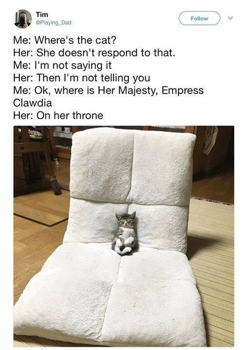 Me: Where's the cat? Her: She doesn't respond to that. Me: I'm not saying it Her: Then I'm not telling you Me: ok, where is Her Majesty, Empress Clawdia Her: On her throne cute tiny kittens sleeping on a chair