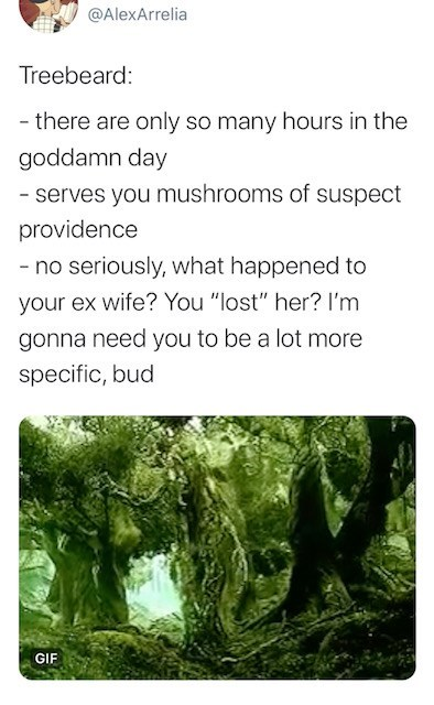 """Vegetation - @AlexArrelia Treebeard: - there are only so many hours in the goddamn day - serves you mushrooms of suspect providence - no seriously, what happened to your ex wife? You """"lost"""" her? I'm gonna need you to be a lot more specific, bud GIF"""