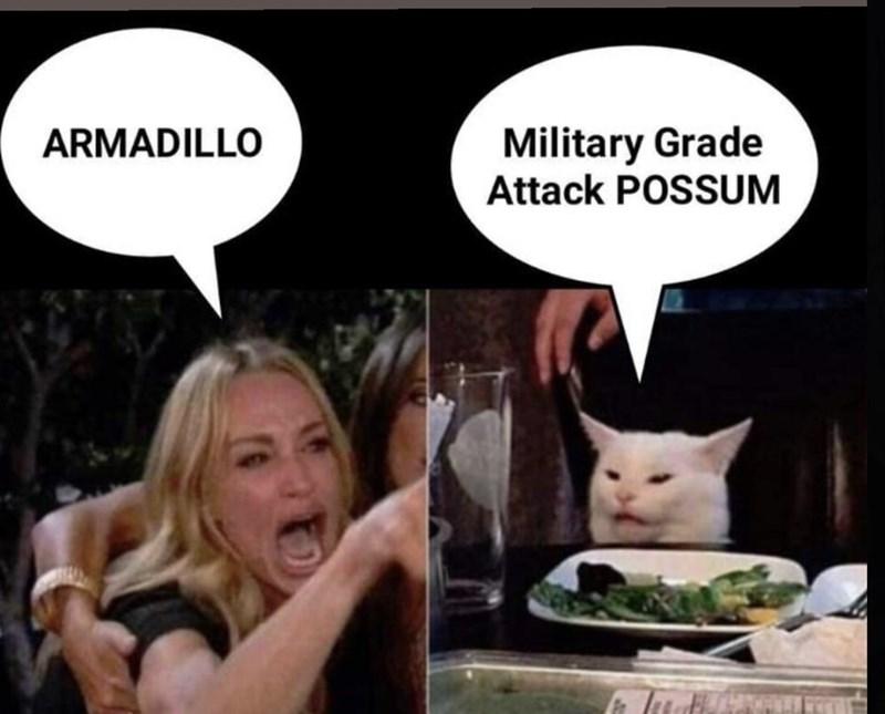 Facial expression - Military Grade Attack POSSUM ARMADILLO