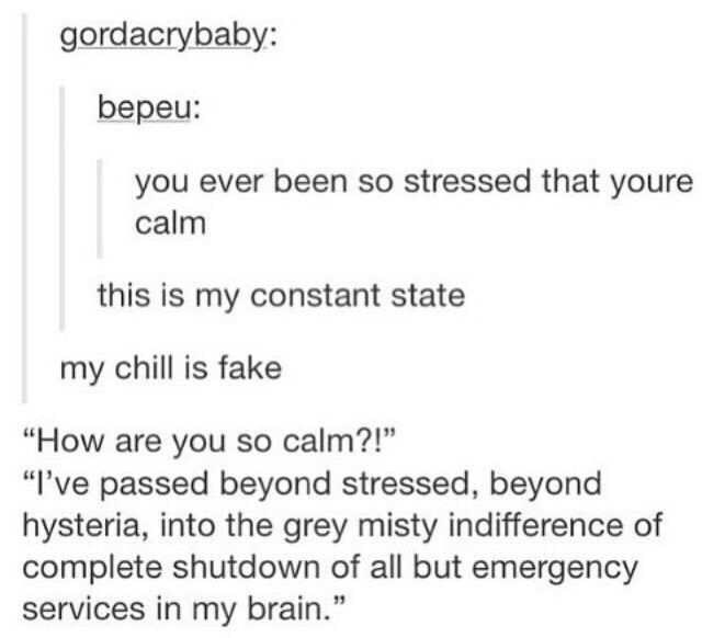 "Text - gordacrybaby: bepeu: you ever been so stressed that youre calm this is my constant state my chill is fake ""How are you so calm?!"" ""I've passed beyond stressed, beyond hysteria, into the grey misty indifference of complete shutdown of all but emergency services in my brain."""