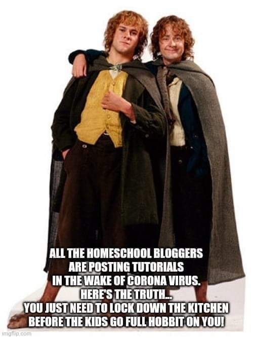 Text - Outerwear - ALL THE HOMESCHOOL BLOGGERS ARE POSTING TUTORIALS IN THE WAKE OF CORONA VIRUS. HERE'S THE TRUTH YOU JUST NEED TO LOCK DOWN THE KITCHEN BEFORE THE KIDS GO FULL HOBBIT ON YOU! imgfip.com