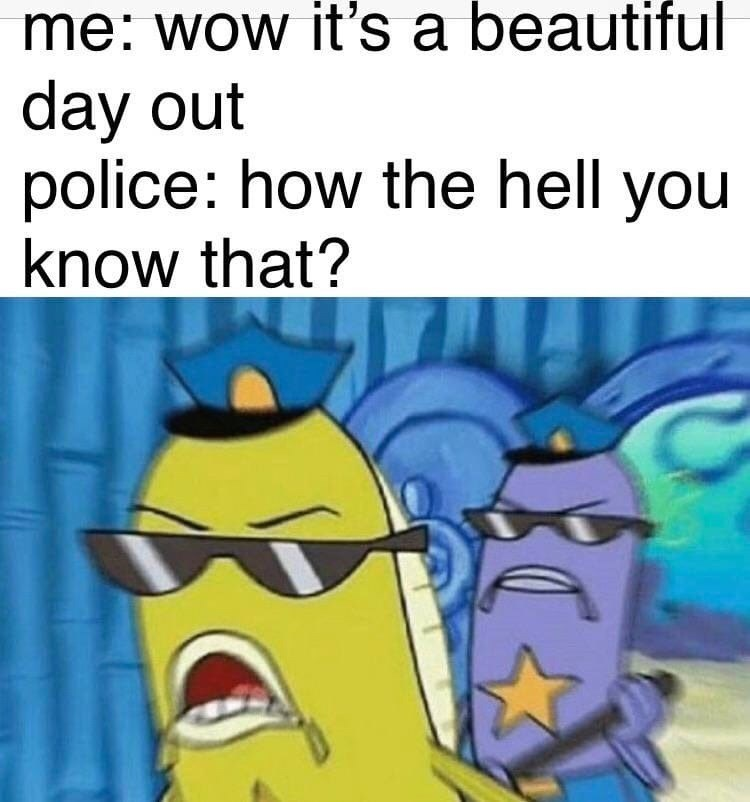 Cartoon - me: wow it's a beautiful day out police: how the hell you know that?