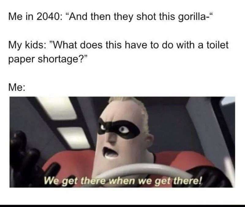 "Eyewear - Me in 2040: ""And then they shot this gorilla-"" My kids: ""What does this have to do with a toilet paper shortage?"" Me: We get there when we get there!"