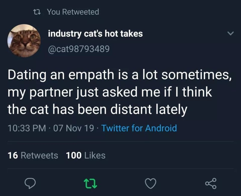 Text - 27 You Retweeted industry cat's hot takes @cat98793489 Dating an empath is a lot sometimes, my partner just asked me if I think the cat has been distant lately 10:33 PM · 07 Nov 19 · Twitter for Android 16 Retweets 100 Likes