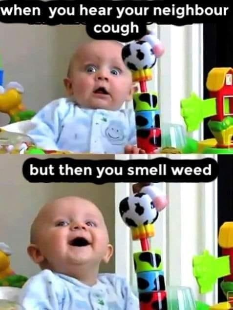 Child - when you hear your neighbour cough but then you smell weed