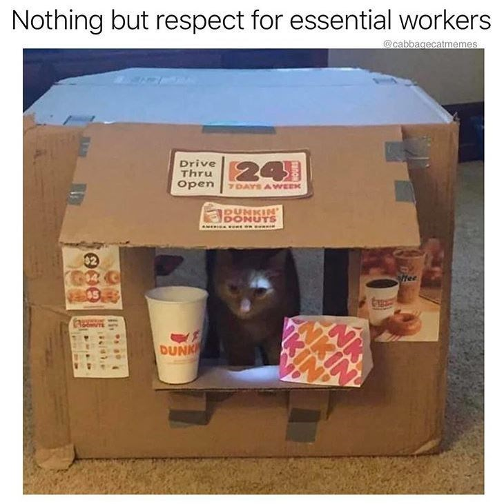 Carton - Nothing but respect for essential workers @cabbagecatmemes Drive Thru 24 Open 7DAYS A WEEK PUNKIN DONUTS AMERICA . O n 32 04C 05 Hee DUNK NKI