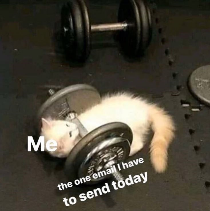 Weights - Me the one email I have to send töday
