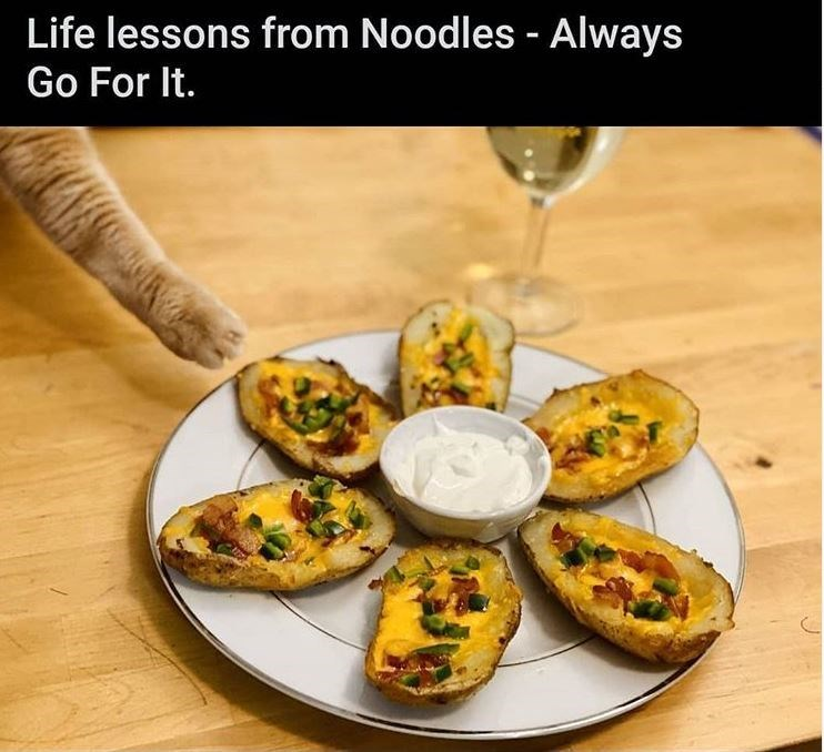 Food - Life lessons from Noodles - Always Go For It.