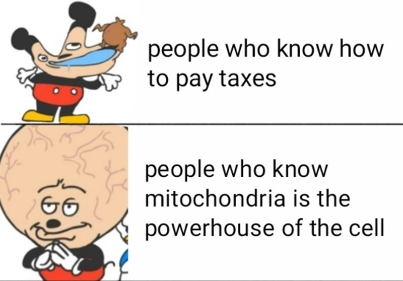 Text - people who know how to pay taxes people who know mitochondria is the powerhouse of the cell