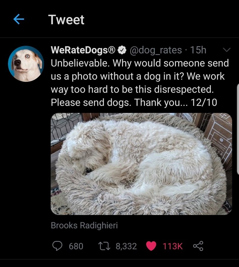 Text - Tweet WeRateDogs® O @dog_rates · 15h Unbelievable. Why would someone send us a photo without a dog in it? We work way too hard to be this disrespected. Please send dogs. Thank you... 12/10 Brooks Radighieri 680 27 8,332 113K