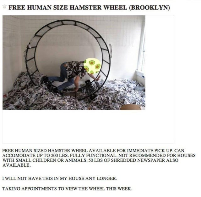 * FREE HUMAN SIZE HAMSTER WHEEL (BROOKLYN) FREE HUMAN SIZED HAMSTER WHEEL AVAILABLE FOR IMMEDIATE PICK UP. CAN ACCOMODATE UP TO 200 LBS. FULLY FUNCTIONAL. NOT RECOMMENDED FOR HOUSES WITH SMALL CHILDREN OR ANIMALS. 50 LBS OF SHREDDED NEWSPAPER ALSO AVAILABLE. I WILL NOT HAVE THIS IN MY HOUSE ANY LONGER. TAKING APPOINTMENTS TO VIEW THE WHEEL THIS WEEK.