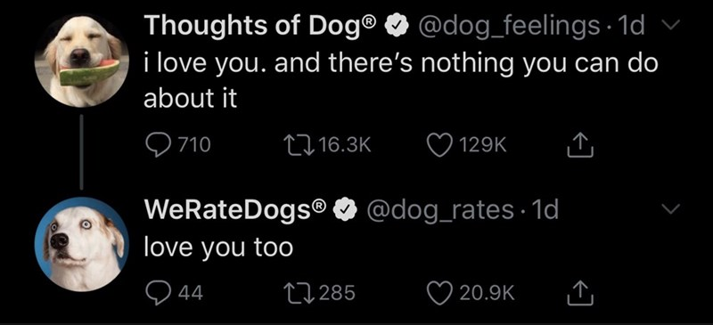 Text - Thoughts of Dog® O @dog_feelings · 1d v i love you. and there's nothing you can do about it Q 710 2716.3K 129K WeRateDogs® O @dog_rates - 1d love you too Q 44 27 285 20.9K
