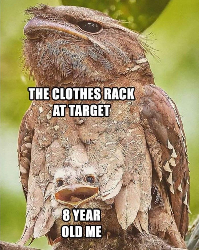 Bird - THE CLOTHES RACK AT TARGET 8 YEAR OLD ME