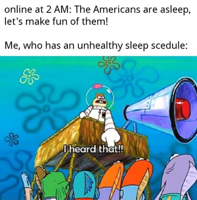 Cartoon - online at 2 AM: The Americans are asleep, let's make fun of them! Me, who has an unhealthy sleep scedule: Oheard that!