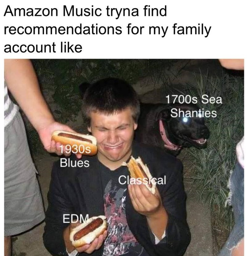 Photo caption - Amazon Music tryna find recommendations for my family account like 1700s Sea Shanties 1930s Blues Classical EDM