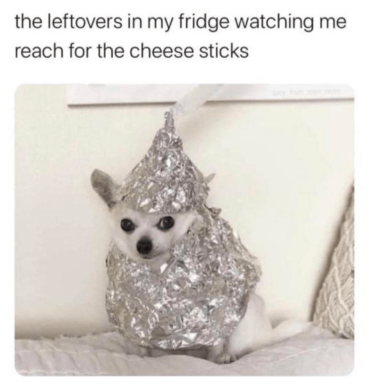 Canidae - the leftovers in my fridge watching me reach for the cheese sticks